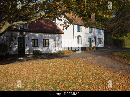 Country cottage autumn leaves Westleton, Suffolk, England - Stock Photo