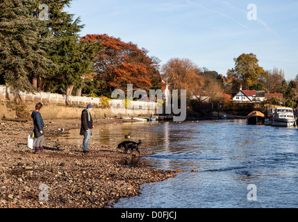 Man, woman and dog walking on the exposed river bed of the Thames River at Low tide - Stock Photo