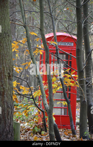 Phone Box in the woods - Stock Photo