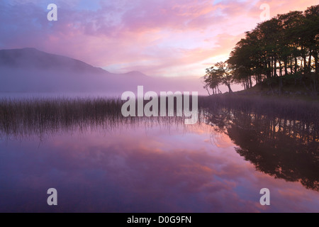 ... Misty Sunrise With Pre Dawn Colours Reflected On The Flat Calm Surface  Of Loch Awe,