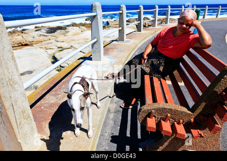 Cape Town, South Africa. A women rests on a bench with her dog on a seaside walkway in Cape Town South Africa. - Stock Photo