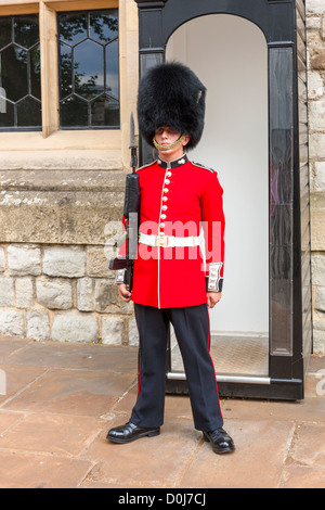 A guard wearing a traditional bearskin stands guard outside the Jewel House in the Tower of London, London, England. - Stock Photo