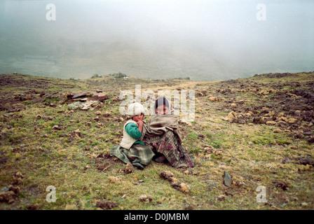 Children in the Cordillera Real - Stock Photo