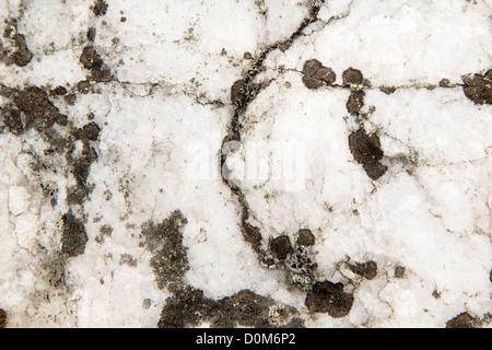 white quartz stone in nature. Natural texture - Stock Photo