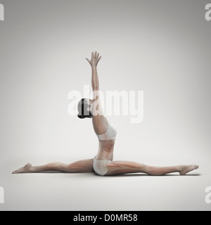 Musculature layered over female body in monkey pose showing activity certain muscle groups in this particular yoga - Stock Photo