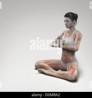 Musculature layered over female body in prayer pose showing activity certain muscle groups in this particular yoga - Stock Photo