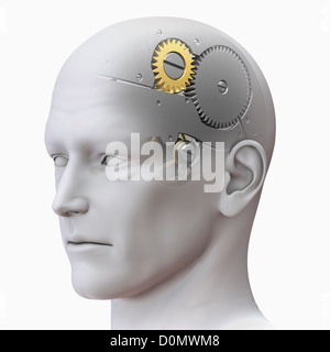 Anatomical model of a human head representing the human mind as a gear system. - Stock Photo