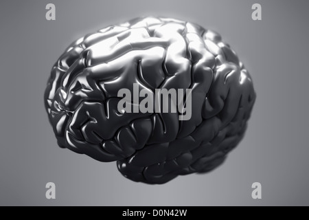A superior view of a metallic brain. The cerebral hemispheres, cerebellum and brain stem are visible. - Stock Photo