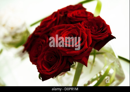 beautiful red roses in a glass vase on table - Stock Photo