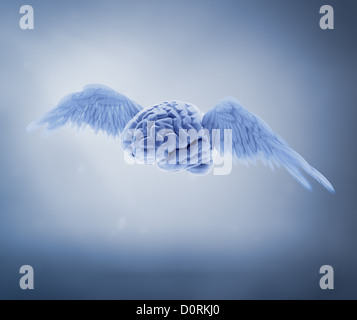 free mind concept - Stock Photo