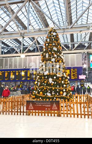 Christmas tree in Glasgow Central Station, Scotland, UK - Stock Photo