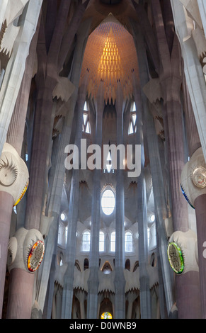 Basilica de la Segrada Familia, located in Barcelona, Spain and designed by Antoni Gaudi, began construction in - Stock Photo