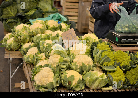 Cauliflowers Weighing vegetables cabbages - Stock Photo