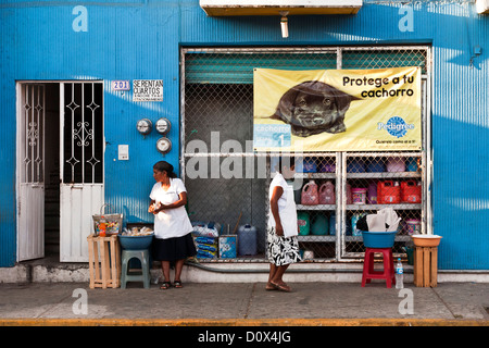 2 Mexican indigenous Indian women vendors wearing hairnets sell their wares on sidewalk in front of beautiful blue - Stock Photo