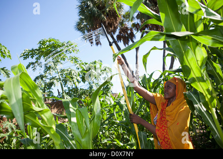 A woman waters her garden with the help of treadle pump irrigation system in Doba, Chad, Africa.