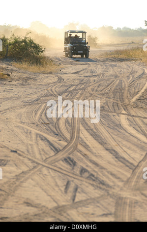 Africa, Botswana, Chobe, National Park, safari, horizontal, land rover, sand, track - Stock Photo