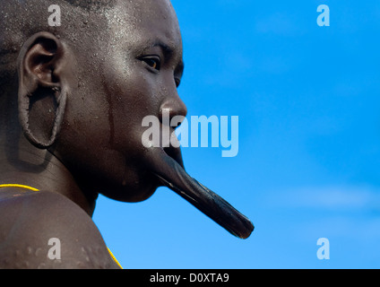 Portrait Of A Mursi Tribe Woman With Lip Plate, Scarifications And Enlarged Ears In Mago National Park, Omo Valley, - Stock Photo