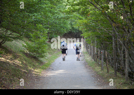 Pilgrims walking a pilgrimage route from St. Jean Pied de Port to Ronscavelles Spain, the French Route of the Camino - Stock Photo