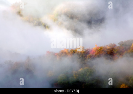 NC - Fall color and rising fog viewed from Webb Overlook along the Newfound Gap Road in Great Smoky Mountains National - Stock Photo