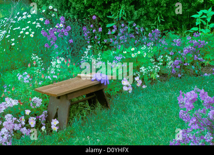 Mowed garden path with gardening tools and purple gloves on wooden bench with blooming purple flowers, Missouri - Stock Photo