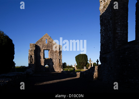 The western gabled wall in the ruins of 13th Century Newtown Cathedral, with Trim Castle visible through the door, - Stock Photo