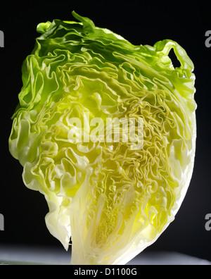Detail of  upright lettuce - Stock Photo