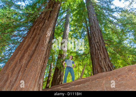 redwood estates jewish single men A real estate broker wants to end a single man with two small children has been told by a real redwood school district excellent elm street.