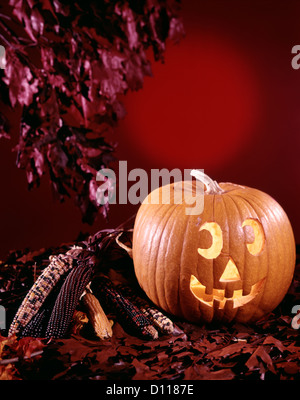 1970s HALLOWEEN STILL LIFE WITH JACK-O-LANTERN PUMPKIN DRIED CORN AND AUTUMN LEAVES - Stock Photo