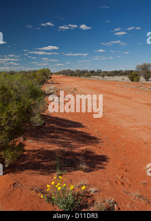 Long red Australian outback road lined with low native vegetation and wildflowers stretching across plains to horizon - Stock Photo
