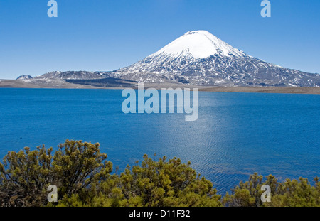 Mountain landscape with snow capped volcano Parinacota rising high above calm blue waters of Lake Chungara in northern - Stock Photo