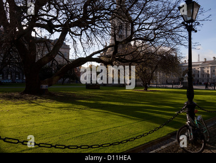 The Library Square, Trinity College Dublin founded in 1592, Ireland - Stock Photo