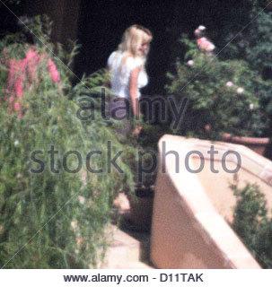 Pamela anderson actress in baywatch stock photo 20021963 - Pamela anderson the people garden ...