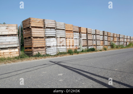 Spain, Catalonia, Wooden boxes of apple plantation on street - Stock Photo