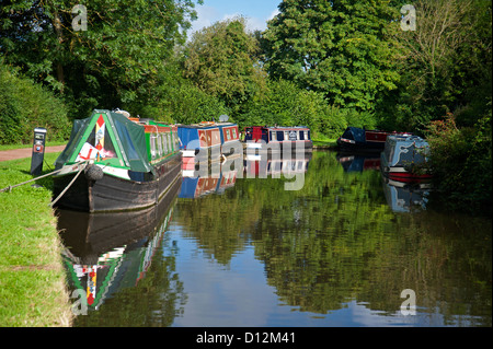 Barges moored along the peaceful Staffordshire and Worcestershire Canal.   SCO 8840. - Stock Photo