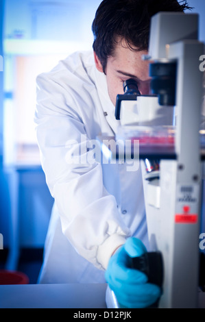 Young male scientist or technician uses a microscope in a science laboratory. - Stock Photo