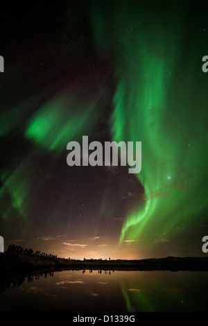 Aurora Borealis (Northern Lights) in Iceland near Reykjavik reflected in a pond with bystanders along the bank. - Stock Photo
