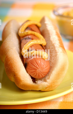 Freshly grilled hot dog with spicy mustard - Stock Photo