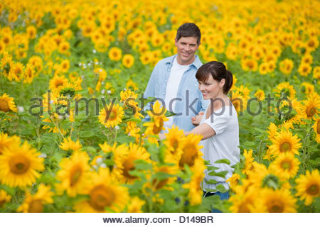 Smiling couple among sunflowers in sunny meadow - Stock Photo