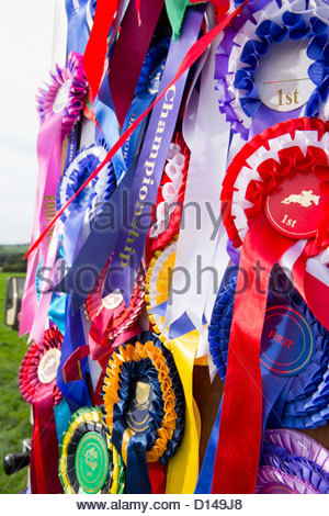 Close up of equestrian rosettes hanging on door - Stock Photo