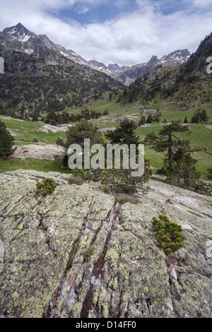 Bare rock and mountains at Marcadau valley, Pyrenees National Park, department of Hautes-Pyrénées, France - Stock Photo