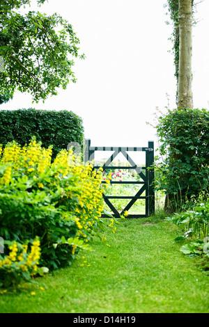 Wooden gate in backyard - Stock Photo