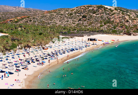Vai beach and the palm tree forest at Crete island in Greece - Stock Photo