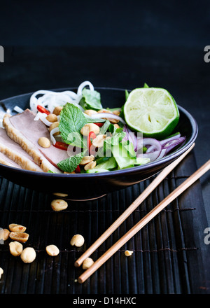 Plate of Vietnamese duck salad - Stock Photo