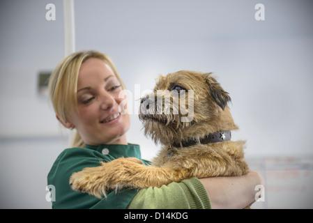 Veterinary nurse holding dog in office - Stock Photo