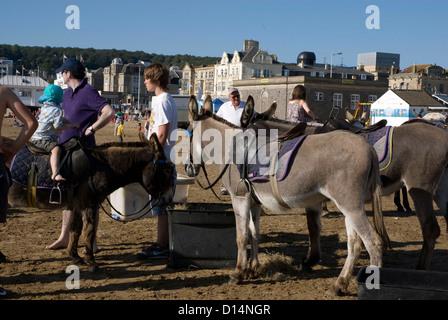 Children having donkey rides on the beach at Weston Super Mare Somerset England UK - Stock Photo