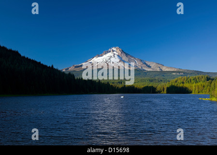 OR00465-00...OREGON - Trillium Lake and Mount Hood in the Mount Hood National Forest. - Stock Photo