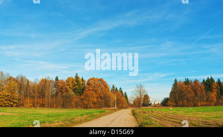 Rural sandy road near agricultural fields. - Stock Photo