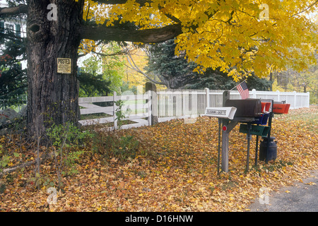 Mailboxes and paper tubes on a country road - Stock Photo