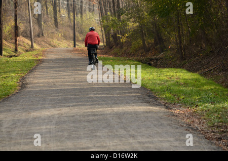 Man rides bike along path in wood lands. - Stock Photo