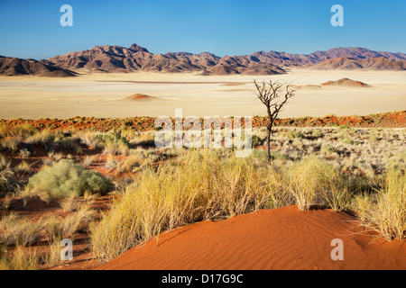 View across Chateau Valley in the Namib-Rand reserve in Namibia - Stock Photo